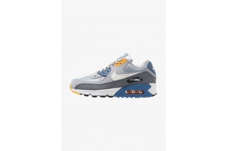 Nike AIR MAX 90 ESSENTIAL - Baskets basses wolf grey/white/indigo storm/university gold/cool grey/anthracite pas cher